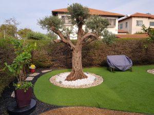 דשא סינטטי בבית פרטי