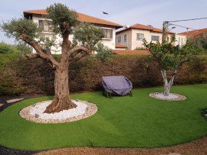 התקנת דשא סינטטי בבית פרטי