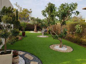 התקנת דשא סינטטי בשילוב שתילת עצים בוגרים